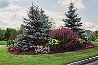 Custom Perennial Gardens